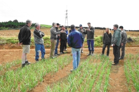 Grower groups discuss traffic practices at a field day