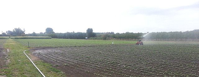 MicroFarm IrrigationWeb