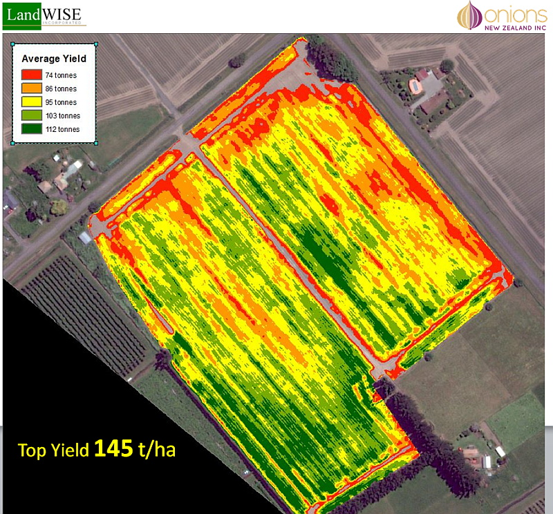 Yield assessments show considerable variation, limits imposed by population, growth of individual plants, or both